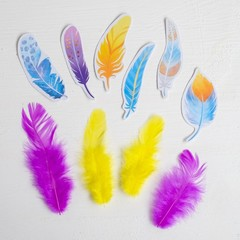 Набор перьев для творчества Моя прекрасная мама