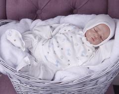 Комплект на выписку новорожденных из роддома Animal