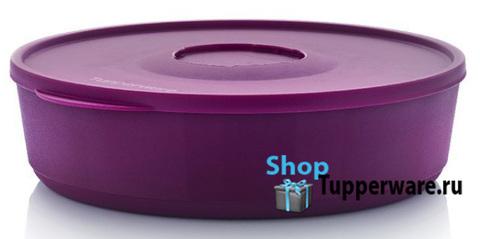 контейнер иллюмина 2,5л в фиолетовом цвете