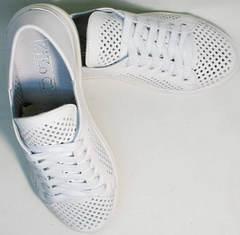 Стильные кеды женские туфли на низком ходу ZiKo KPP2 Wite.