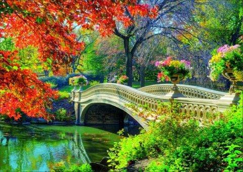 Алмазная Мозаика 30x40 Белый мост с цветами