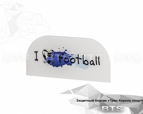 Защитный бортик ЗБ-01 белый/король спорта