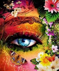 Картина раскраска по номерам 40x50 Разноцветный глаз девушки