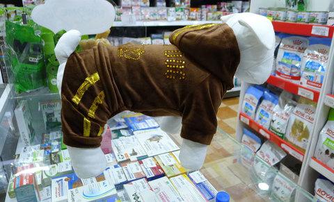 Велюровый костюм для мелких пород собак, коричневый