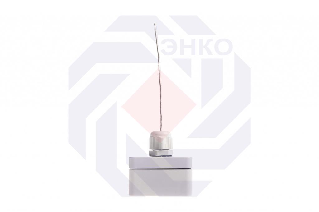 Счетчик импульсов с радиоинтерфейсом ТВХ 2-канальный