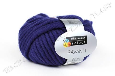 Пряжа Селект Саванти (Selecte Savanti) 05-92-0004 (04745)