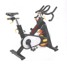 Скоростной велотренажер PREMIER PROF-M