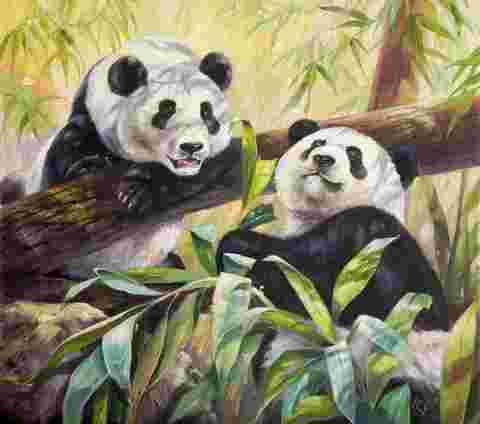 Алмазная Мозаика 40x50 Сонные панды (арт. WXSA2574)