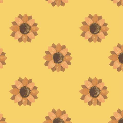 солнечные цветы