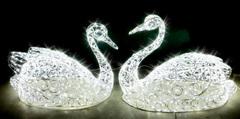 Световой Лебедь