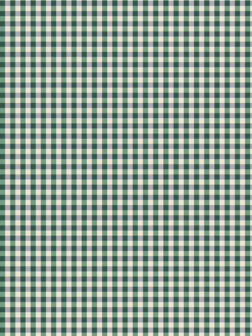 Пододеяльник  -Корней (компаньон)- 1,5-спальный на молнии 145х215 см