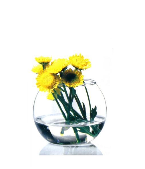 Ваза флора круглая 79 мм 1*12
