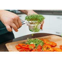 Набор для выращивания микрозелени КРЕСС-САЛАТ - 5 уп., инструкция по применению и семена в комплекте, Здоровья клад