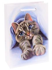 Пакет подарочный с глянцевой ламинацией 22x31x10 см ( ML ) Славный котик.