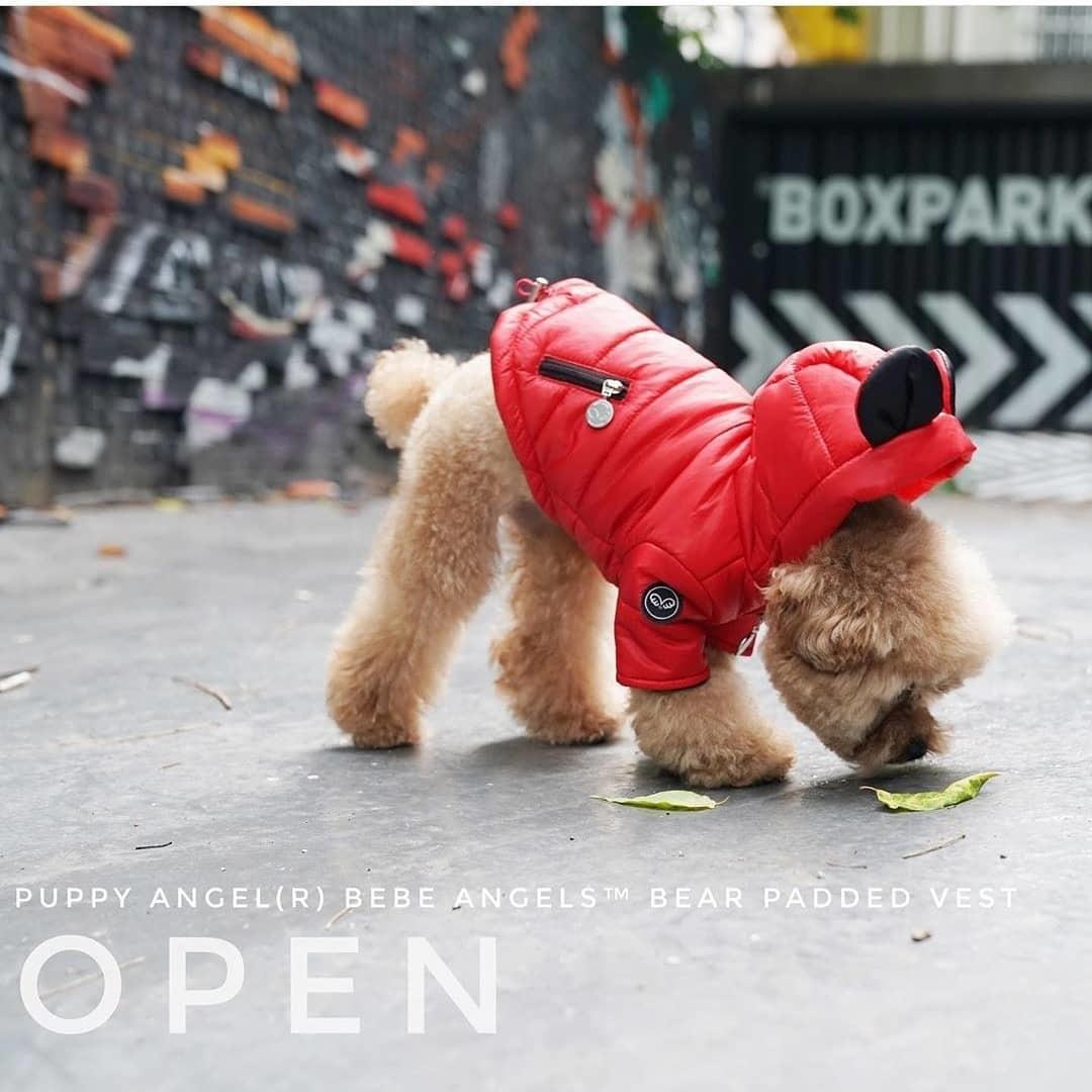 510 PA | Куртка для собак