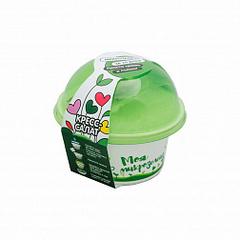Набор для выращивания микрозелени РУККОЛА, инструкция по применению и семена в комплекте, Здоровья клад