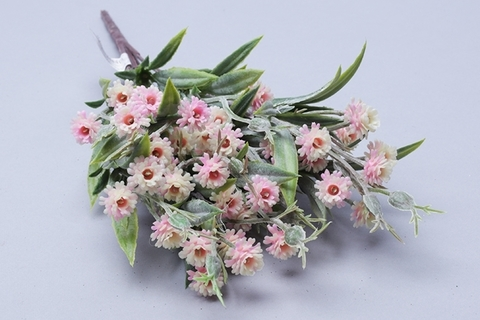Гипсофила розовый, зелень флористическая