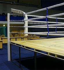 Боксёрский ринг на помосте 0,5 6x6 TOTALBOX Р50 70-6