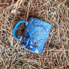 Fincan/Чашка/Cup Van Gogh 1
