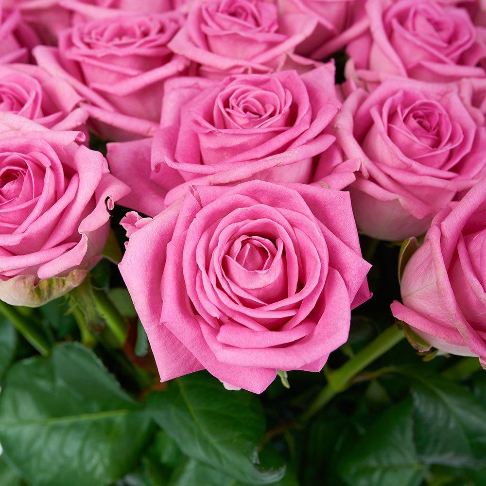 Купить розовые розы в Перми доставка на дом круглосуточно