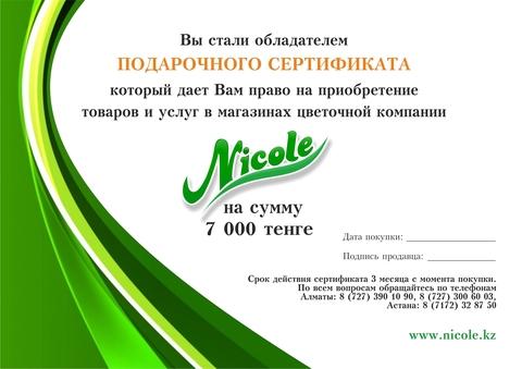 Подарочный сертификат 7000