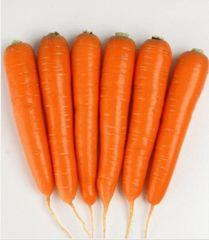 Натива F1 семена моркови курода/шантане (Sakata / Саката)