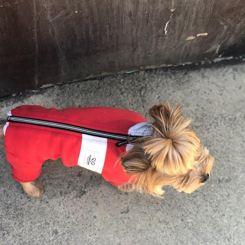 420 PA - Теплый коcтюм для собак на меховой подкладке с манжетами для мальчиков