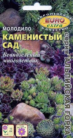 Молодило Каменистый сад, смесь