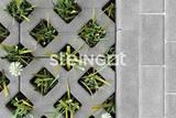 Тротуарная плитка STEINGOT Газонная решетка (Экопарковка) 600х400х100 (Серый)