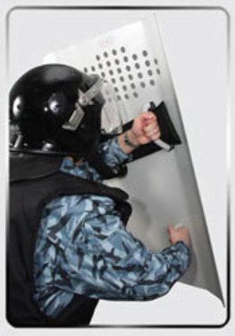 Щиты противоударные «ШТУРМ-0»  противоударный металлический