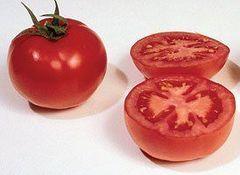 ГС 12 F1 семена томата детерминантного (Syngenta / Сингента)