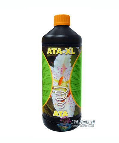 ATAMI ATA XL 1 л