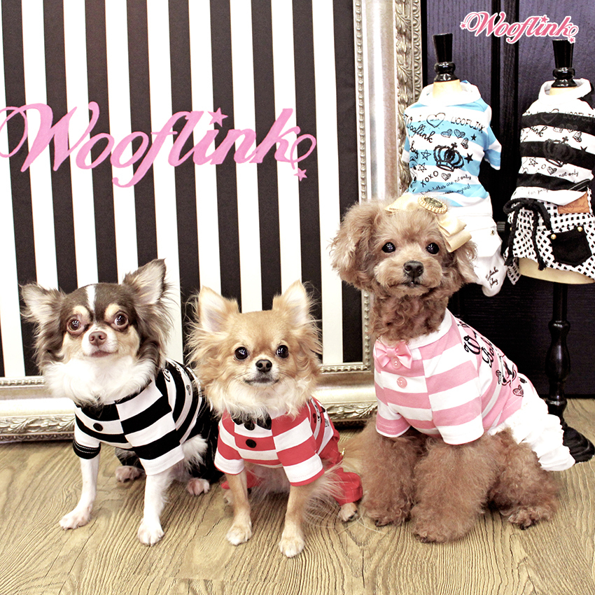 футболки для собак wooflink