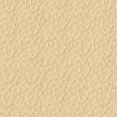 Искусственная кожа Hermes (Гермес) 284 Alabastr Gleam