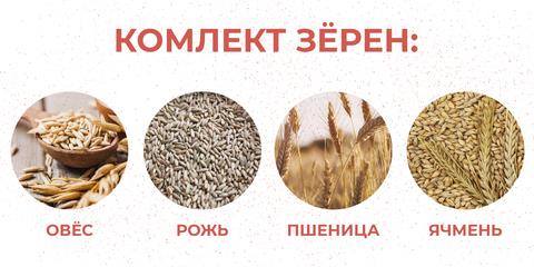 КОМПЛЕКТ ЗЁРЕН: Пшеница, Рожь, Овёс, Ячмень