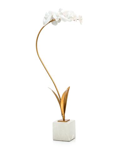 Porcelain Orchid