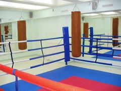 Боксёрский ринг напольный на растяжках 5x5 TOTALBOX Р 68-5