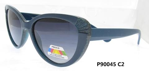 P90045C2