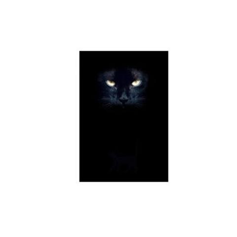 Дневник Глаза Кошки