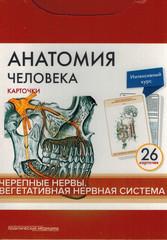 Анатомия человека: карточки (26 шт). Черепные нервы. Вегетативная нервная система