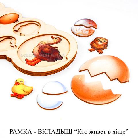 РАМКА - ВКЛАДЫШ «Кто живет в яйце»