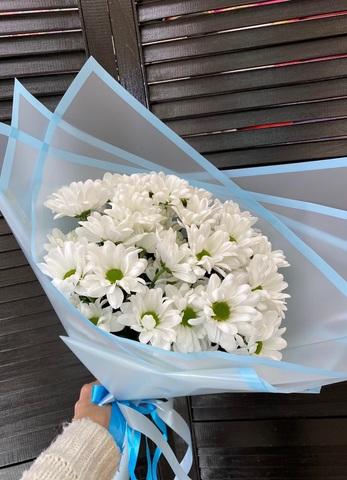 5 кустовых хризантем  в оформлении #21151