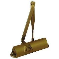 TS 68 EN2,3,4 дверной доводчик Dormakaba (золото)