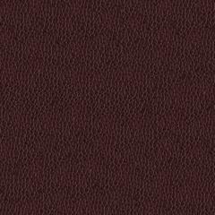 Искусственная кожа Alpha (Альфа) 2303-07