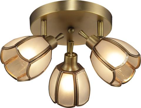 INL-9317C-03 Golden Brass