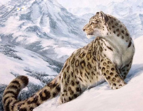 Алмазная Мозаика 30x40 Тигрица на снежной горе