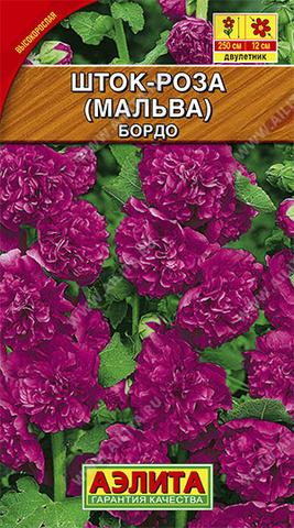 Шток-роза Бордо