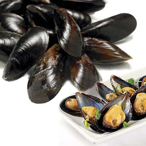 https://static-sl.insales.ru/images/products/1/2536/89369064/mussels_in_shells.jpg