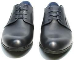 Дерби туфли синего цвета мужские Ikos 060-4 ClassicBlue.