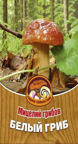 Мицелий Грибы Белый гриб 60 мл Грибное удовольствие